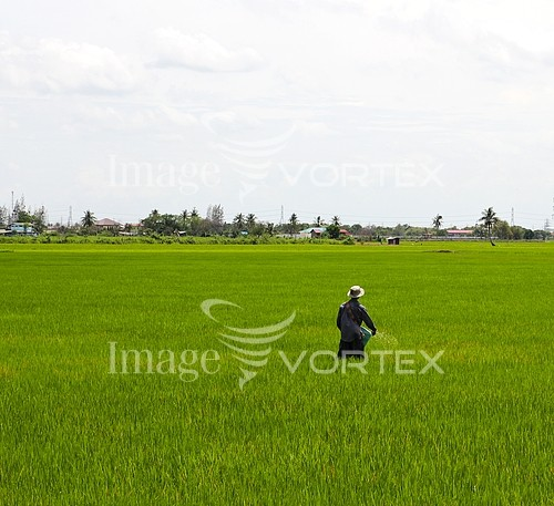 Industry / agriculture royalty free stock image #963468021