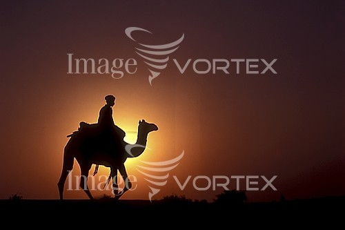 Sunset / sunrise royalty free stock image #973827975