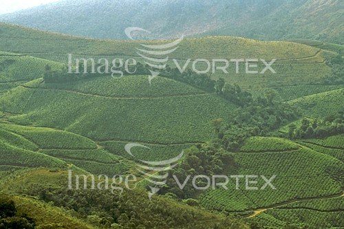Nature / landscape royalty free stock image #984977527