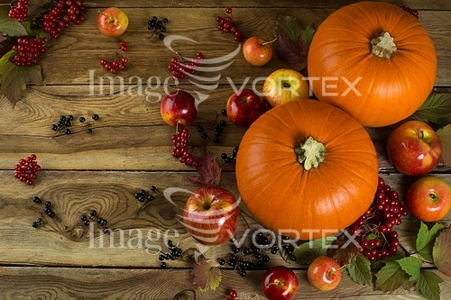 Food / drink royalty free stock image #997027875