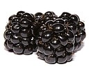 Blackberries royalty free stock image - click to enlarge