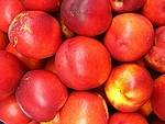 Nectarine royalty free stock image - click to enlarge