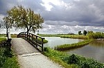 Park / Outdoors 270449792