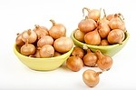 Onion royalty free stock image - click to enlarge